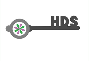 Holistic Dyslexia Service
