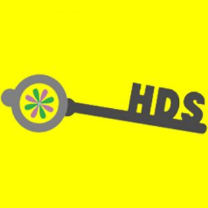 HDS yellow background